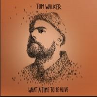 Tom Walker - Heartbeats